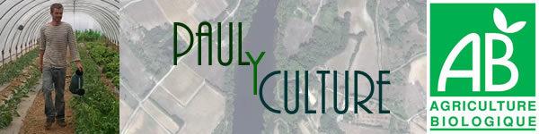 Paul Y Culture